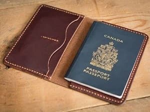 vi passport